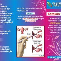 Promosi Kesehatan Reproduksi dan KB